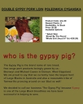 who-is-gypsy-pig